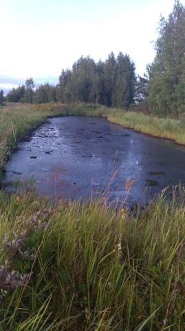 Ликвидация места розлива нефтепродуктами участка в Некрасовском района